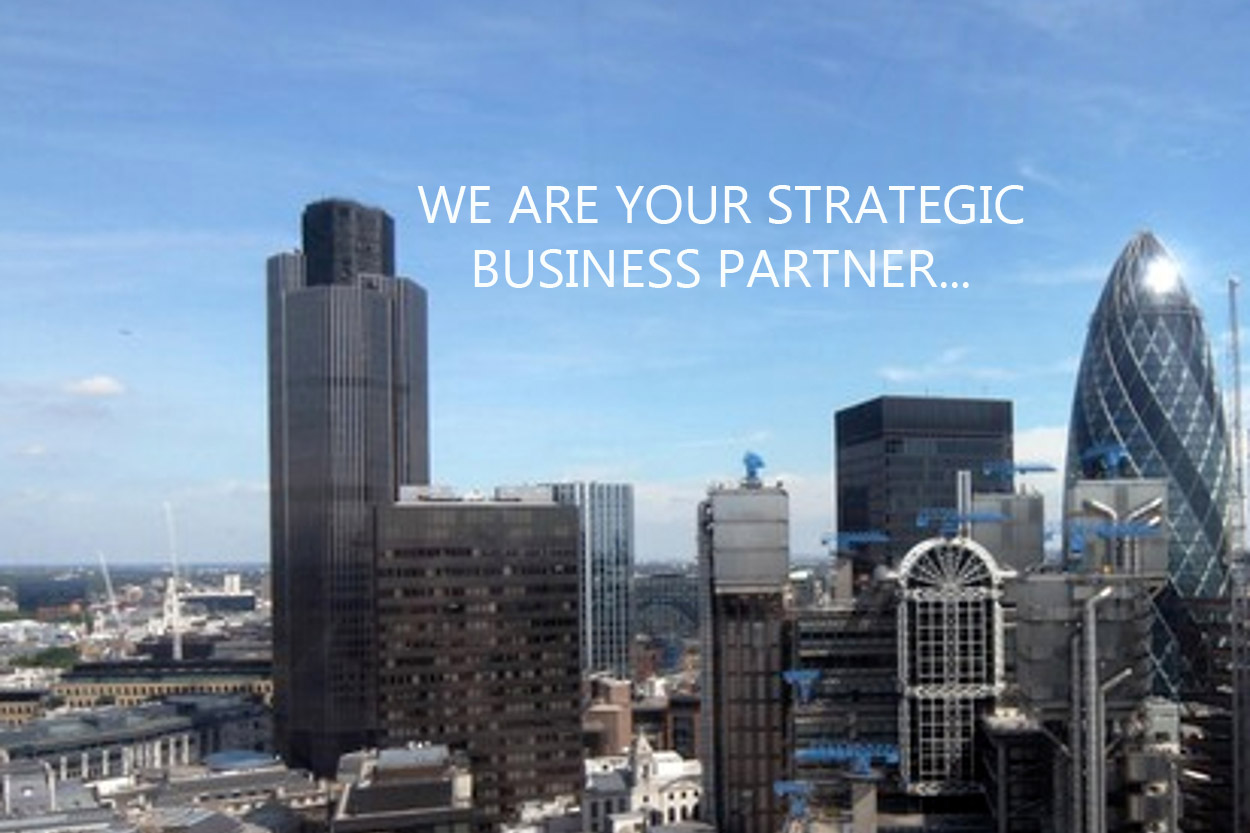 WE ARE YOUR STRATEGIC BUSINESS PARTNER